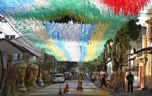 Niets is te veel als de straat moet versierd worden